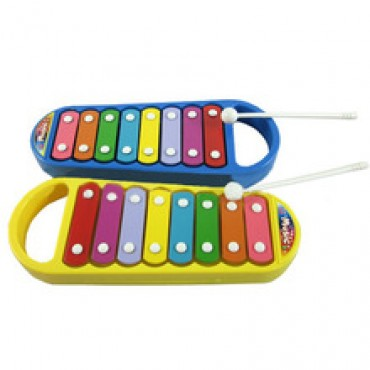 Smart Clever Development Musical Toy in Nepal.